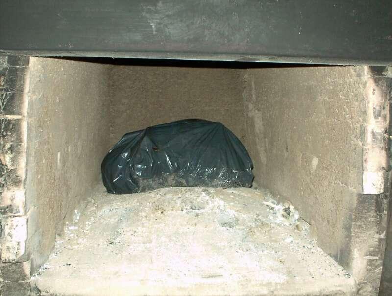 Cremación de restos cadavéricos (Etapa 1)