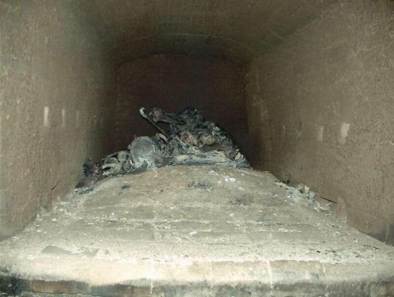 Cremación de restos cadavéricos (Etapa 3 - 20 minutos)